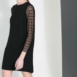 Zara black lace sleeve dress